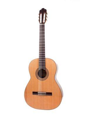 گیتار کلاسیک Antonio Sanchez 1010