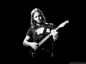 دیوید گیلمور David Gilmour